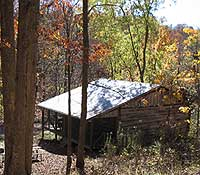 Cabin Beneath the Oaks