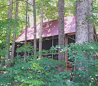 Woods View Cabin